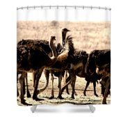 The Gathering Place Shower Curtain