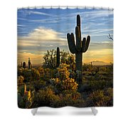 The Golden Southwest  Shower Curtain