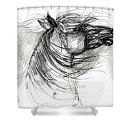 The Horse Sketch Shower Curtain