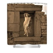 The Palaestra - Apollo Sanctuary Shower Curtain