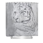 Tiger Watching Shower Curtain
