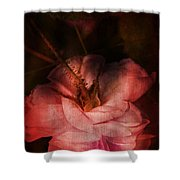 Time Of Roses Shower Curtain