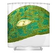 Tomato Chloroplast, Tem Shower Curtain
