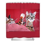 2 Tora's Shower Curtain