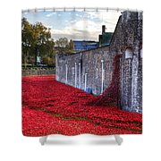 Tower Of London Poppies Shower Curtain