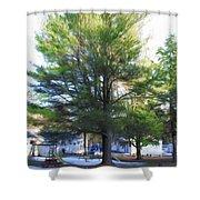 Tree 1 Shower Curtain