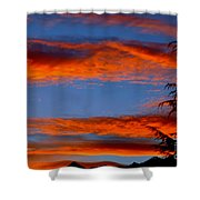 Tree In Sunset Shower Curtain