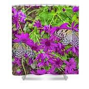 2 Tree Nymph Butterflies Shower Curtain