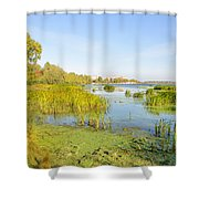Trees And Reeds Close To The River Shower Curtain