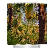 Tropical Forest Palm Trees In Sunlight Shower Curtain