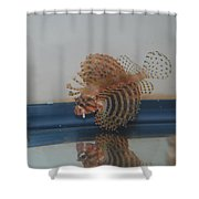 Tropical Lion Fish Shower Curtain