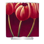 Tulips Are People Xiv Shower Curtain