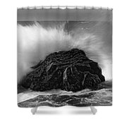 Turned To Stone Shower Curtain
