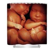 Twin Babies Shower Curtain