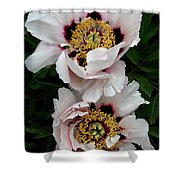 Two Together Shower Curtain