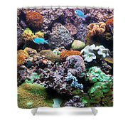 Underwater View Shower Curtain
