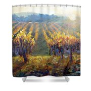 Vineyard Sunset Shower Curtain