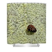 Visual Gift Shower Curtain