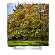 Westonbirt Arboretum Shower Curtain
