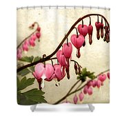 Where Love Grows Shower Curtain