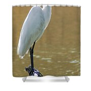 Magnolia White Heron Shower Curtain