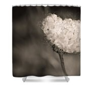White Whisper Shower Curtain