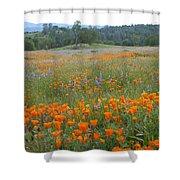 Wildflower Wonderland 10 Shower Curtain