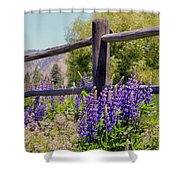 Wildflowers On The Fence Shower Curtain