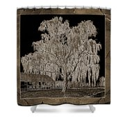 Willow Ranch Shower Curtain