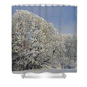 Winter In Oregon Shower Curtain