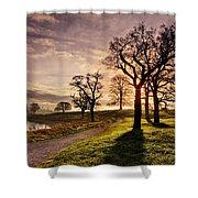 Winter Morning Shadows / Maynooth Shower Curtain