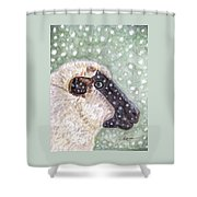 Wishing Ewe A White Christmas Shower Curtain