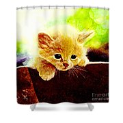 Yellow Kitten Shower Curtain