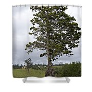 Yungabura Landscape Shower Curtain
