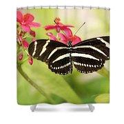 Zebra Longwing Butterfly Shower Curtain