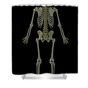 The Skeleton Shower Curtain