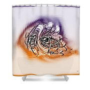 2001040 Shower Curtain