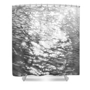 2002 Ruffled Waters  Shower Curtain