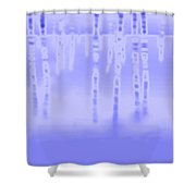 2003077 Shower Curtain