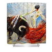 2010 Toro Acrylics 02 Shower Curtain
