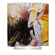 2010 Toro Acrylics 03 Shower Curtain