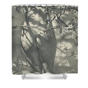 2011 Spring Nimph  Shower Curtain