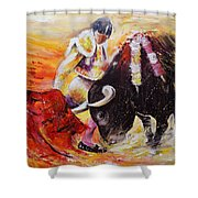 2011 Toro Acrylics 01 Shower Curtain