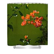 2013 Calendar Shower Curtain