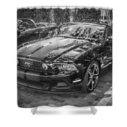 2013 Ford Shelby Mustang Gt 5.0 Convertible Bw  Shower Curtain