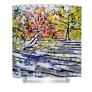 2014 19 Silver And Blue Stairs To Pink And Yellow Woods Srpsko Sarajevo Shower Curtain
