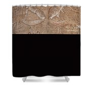 Edfu Shower Curtain