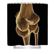 Knee Bones Right Shower Curtain