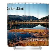 21042 Perfection 2 Shower Curtain