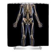 The Skeleton Shower Curtain